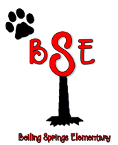 BSES Contact Information