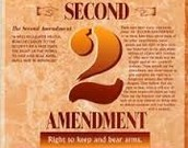 Amendment #2 Self Protection