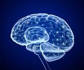 Brain cell growth
