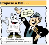 Present the Bill to Congress