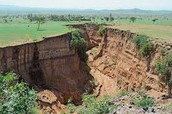 The Great Rift Valley: Tectonic Plates