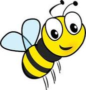 Spring Math Bee