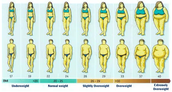 So, what's the difference between obesity, being overweight and being underweight?