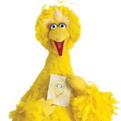 Big Bird at Yellow Week