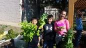 Cypress Garden Spring Planting Day