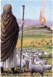 משה כמנהיג מעצב