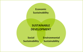 Sustainability Theme