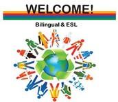 Gretchen Holtsinger, Director of ESL/Bilingual:
