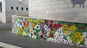 פרויקט הפרחים!