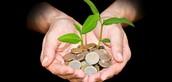 Pennies for Patients Recap