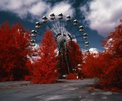 RED FOREST OF CHERNOBYL