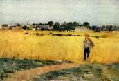In the Wheatfields