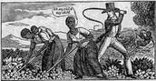 whipping/punishing slaves