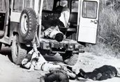 Discarding of Bodies during La Violencia