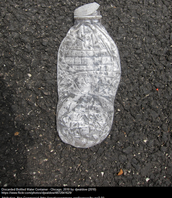 Water bottle thrown on the street.