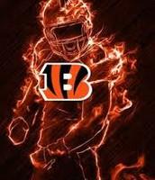 My favorite team(Bengals)