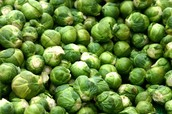 Nutriants Found in Brussels Sprouts