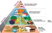 Esta la piramide de comida
