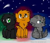 Hollyleaf, Lionblaze and Jayfeather