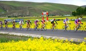 Annual Bicycle Road Race at Qinghai Lake