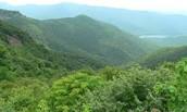 Appalachians Highlands