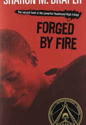 Summary on Forged By Fire