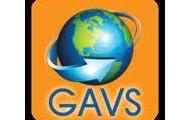GAVS Experience