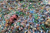 Question 3: What does it mean to recycle? Why should someone recycle? How long does it take for these to decompose?