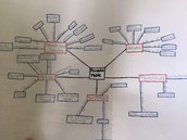 Student Concept Mapping in Chemistry
