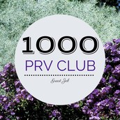 $1,000+ PRV