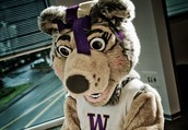 Join us for First-Year Student Preview Day at the University of Washington Bothell