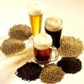 Barley Marlt beers