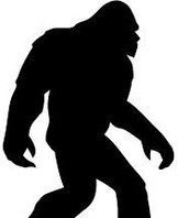 Why Do They Call Him Bigfoot?