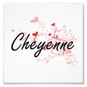 Cheyenne's Party Plan Co