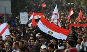 Egyptians protesting government reform