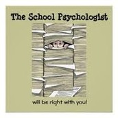 School Psycologist