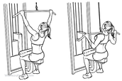 Lat pull down (Exercise)