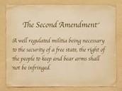 second amendment description