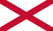 Irish Flag (at the time)