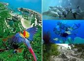 Xcaret Eco Theme Park
