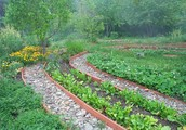 Guide to Permaculture Design and style Courses