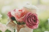 玫瑰活氧臉部護理