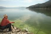 Pesca: