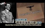 Operation Pastorius