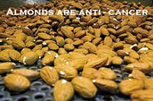 Almonds are an anti-cancer