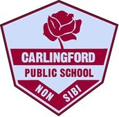 `This is a picture of the school crest
