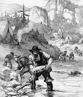 1849 Gold Rush Starts