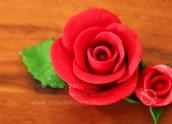 Yelraf  Rose