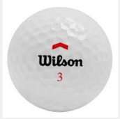 Wilson brand