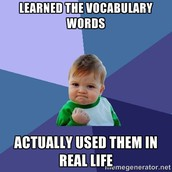 Vocabulary Quizes